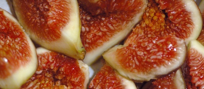 Figs (Credit: Eric Hunt/Wikipedia - Creative Commons)