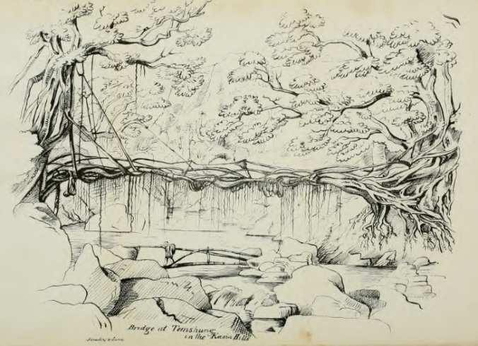 ficus-bridge-henry-yule-1844-khasi-hills