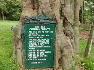 Mugumo-ten-commandments-tree-only