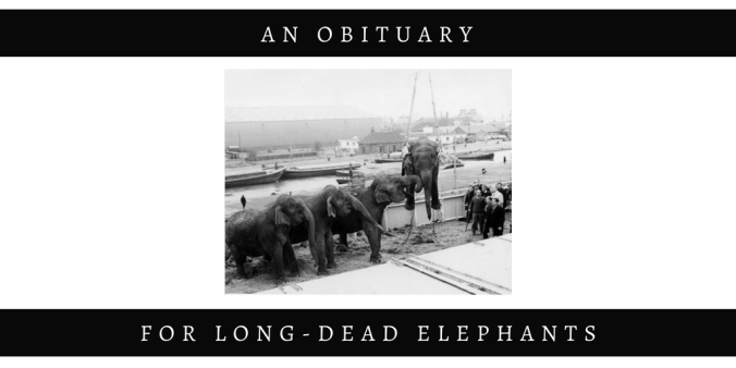 FOR LONG-DEAD ELEPHANTS