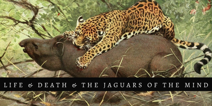 Jaguars of the mind